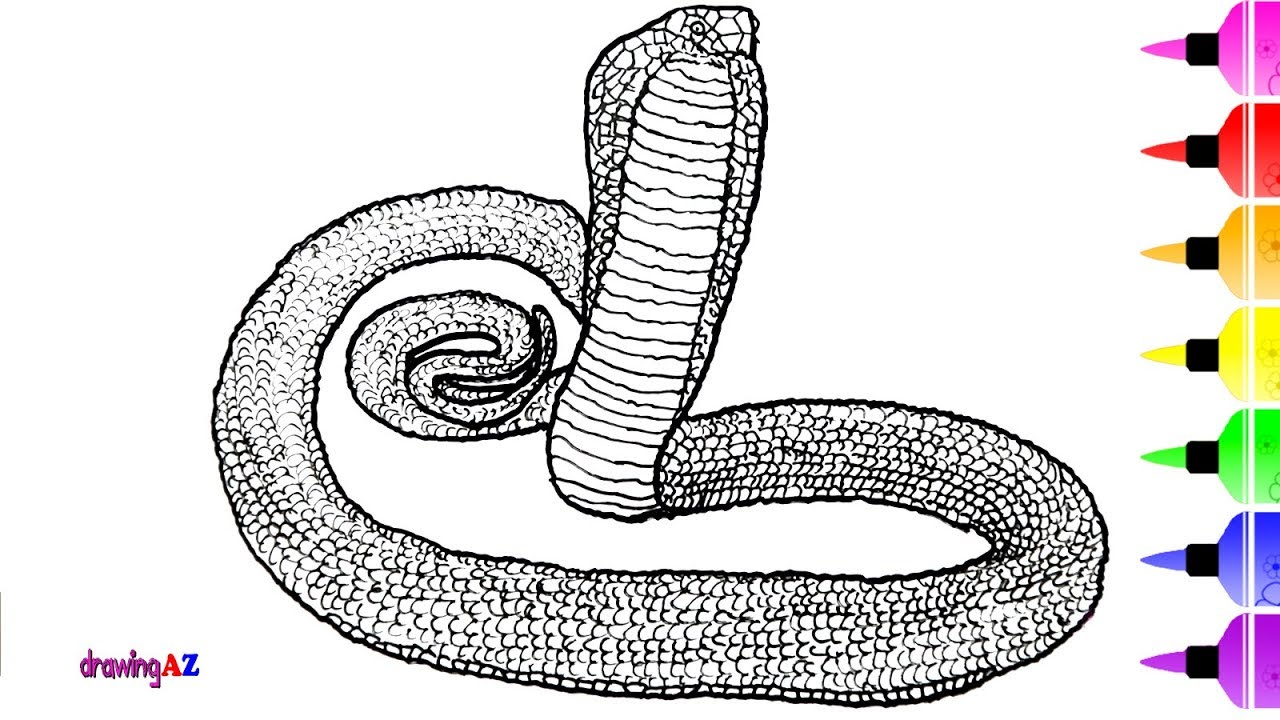 1280x720 How To Draw King Cobra And Anaconda Coloring Pages For Children