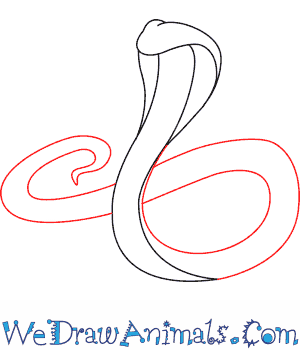 300x350 How To Draw A King Cobra