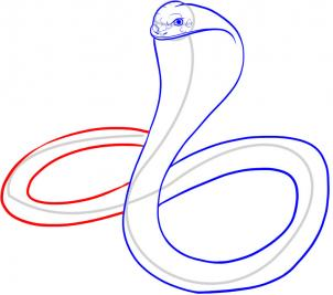 302x267 How To Draw A King Cobra Step 7 Animal Of Week Projects