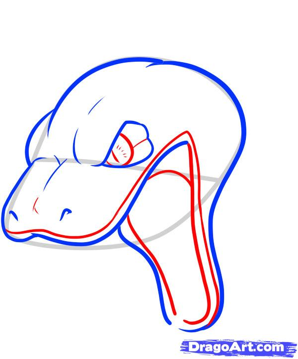 600x722 How To Draw A Snake Head, Draw Snake Heads Step 9 Snake