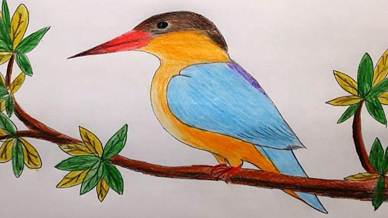 1280x720 How To Draw A Kingfisher Step By Step Masranga Bird Drawing