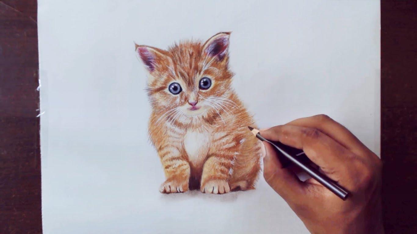 1366x768 Drawing Animals 1