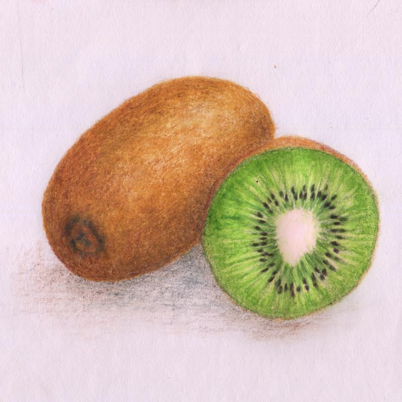 800x800 Drawing Kiwi Practise