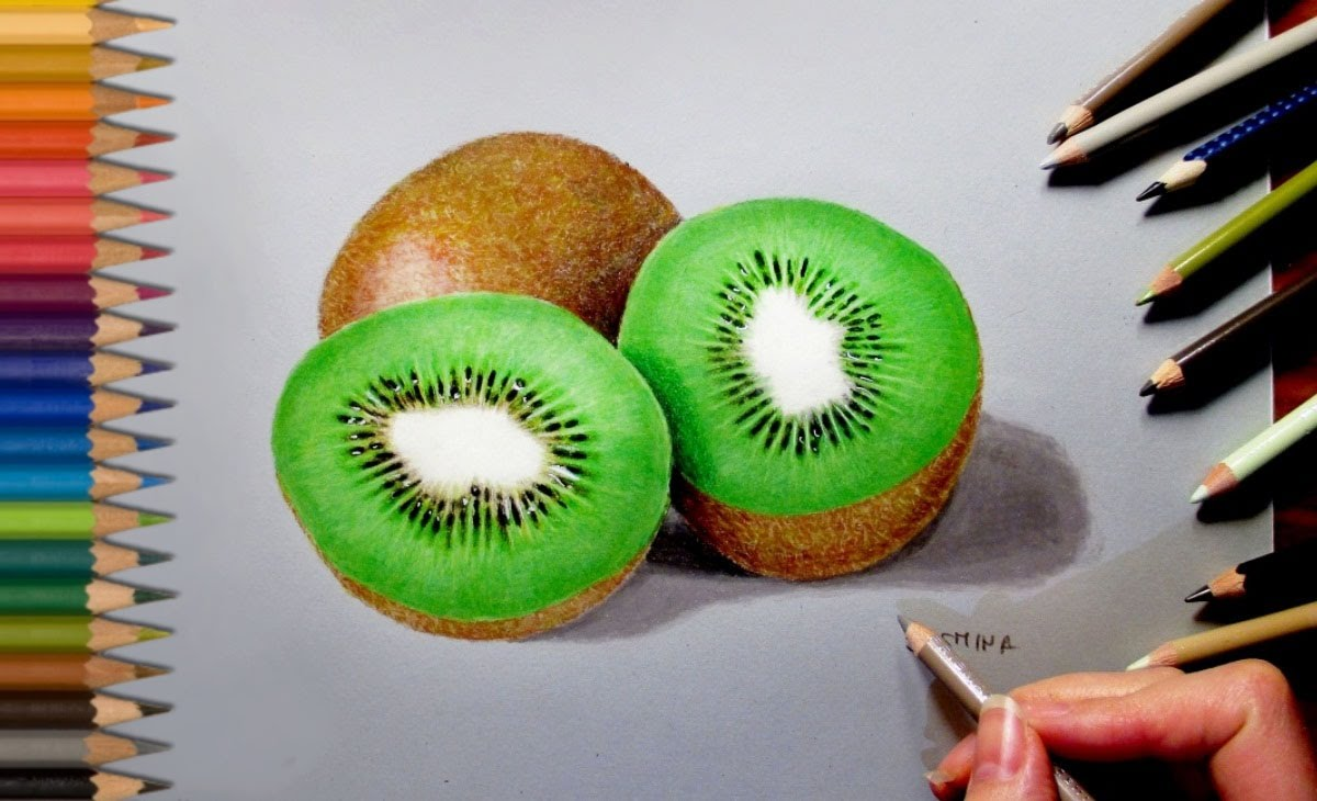 1200x730 Drawing Realistic Kiwi In Colored Pencil Jasmina Susak