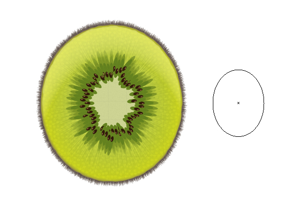 600x400 A Sliced Kiwi Fruit With Only One Shape In Adobe Illustrator