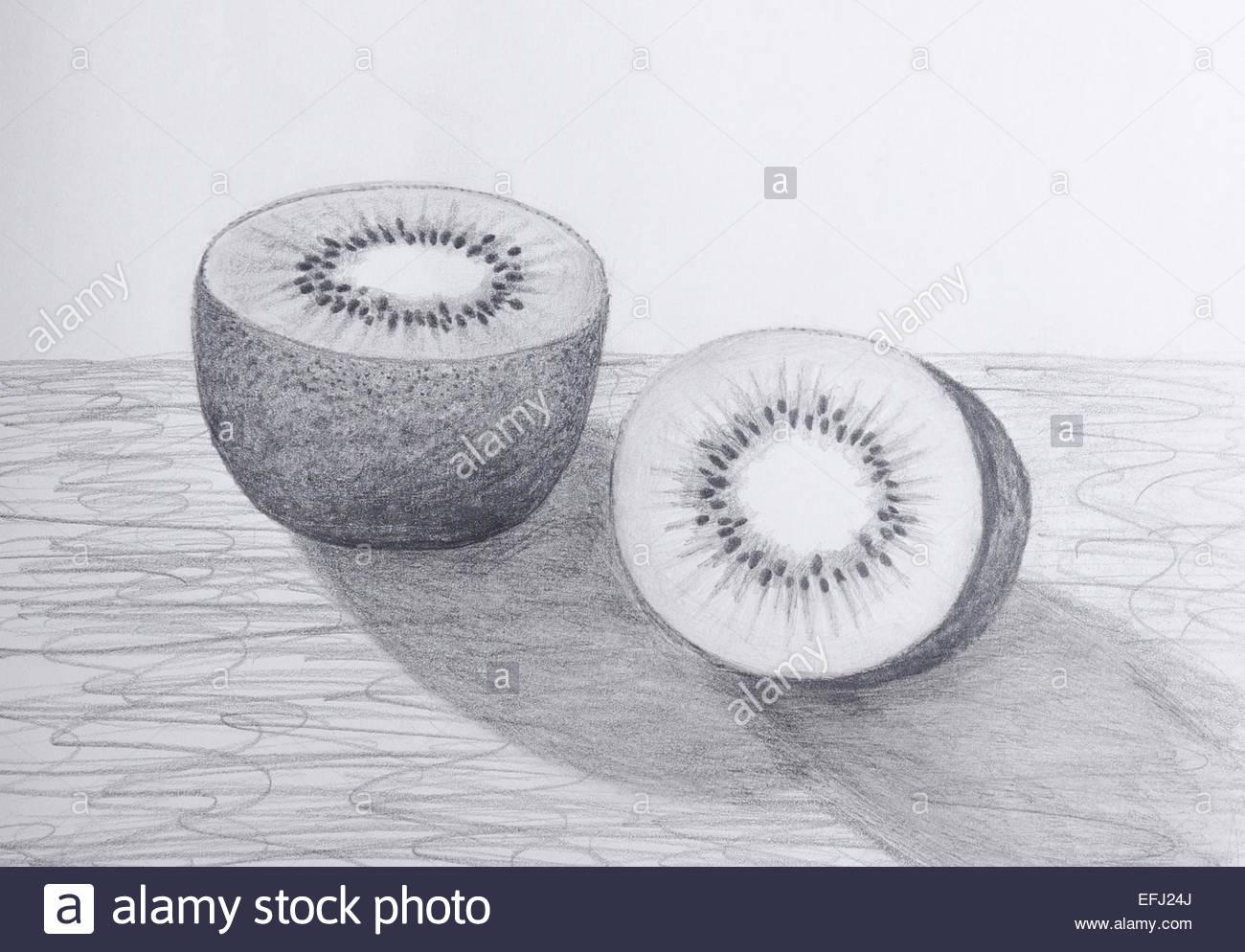 1300x994 Pencil Drawing Of A Sliced Kiwi Fruit