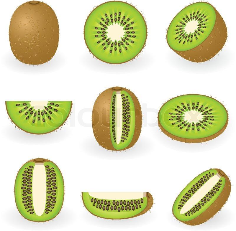 800x784 Vector Illustration Of Kiwi Fruit Stock Vector Colourbox