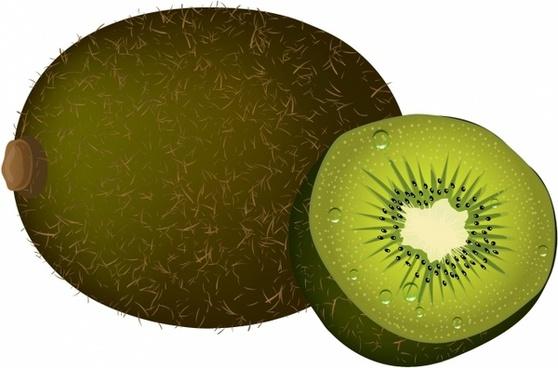 558x368 Vector Kiwi Fruit Free Vector Download (2,129 Free Vector)
