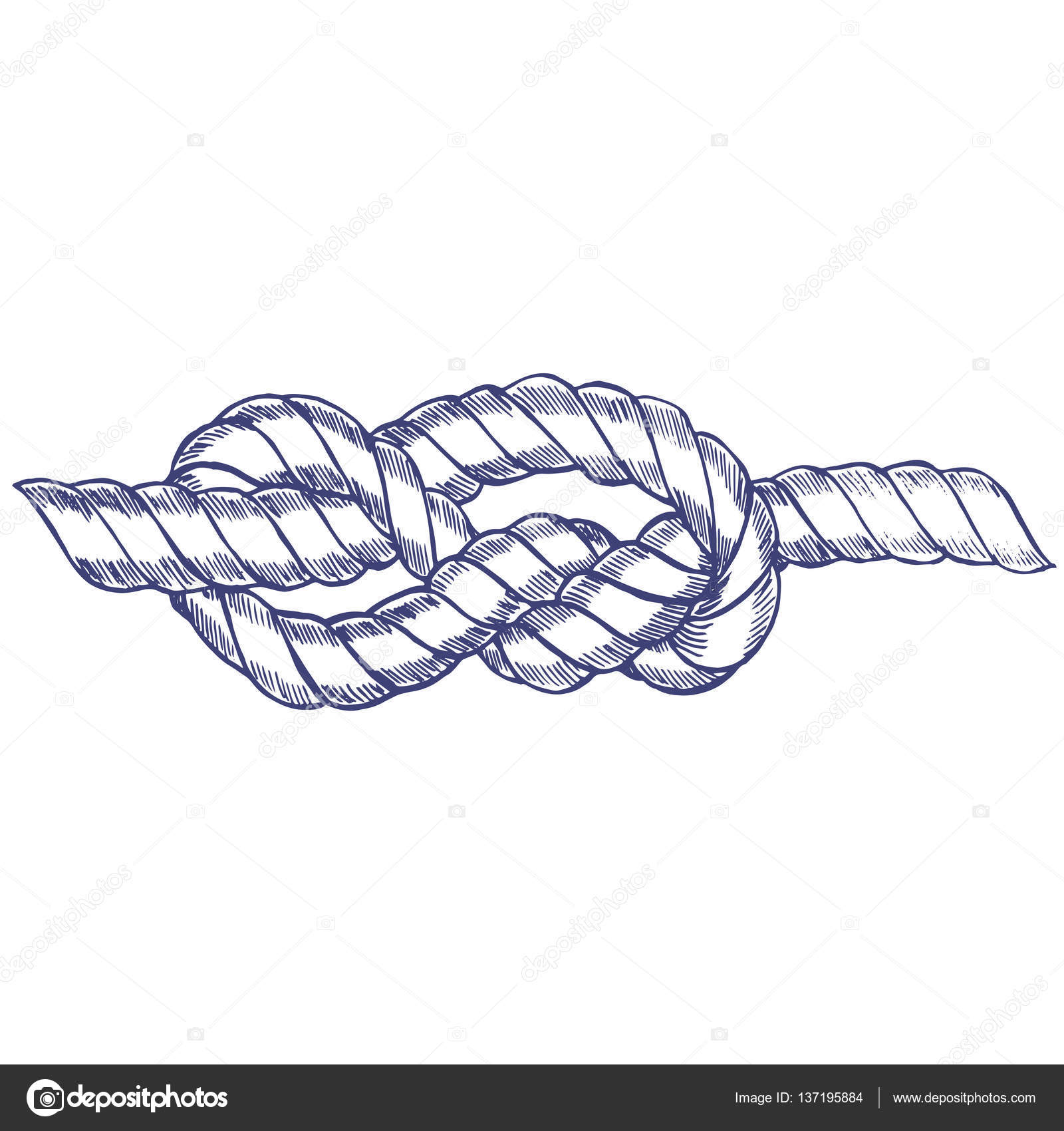 1600x1700 Sea Knot Rope Hand Draw Sketch. Vector Stock Vector Bigmouse