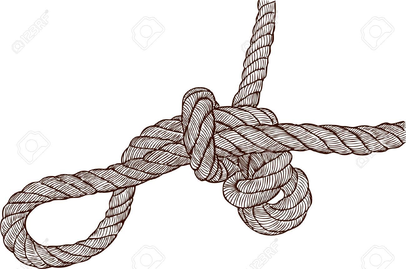 1300x864 Vector Drawing Of A Sea Knot Royalty Free Cliparts, Vectors,