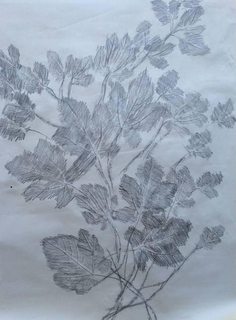 770x1042 Saatchi Art The Tree Of Knowledge Drawing By Adina Shpigler Kayra