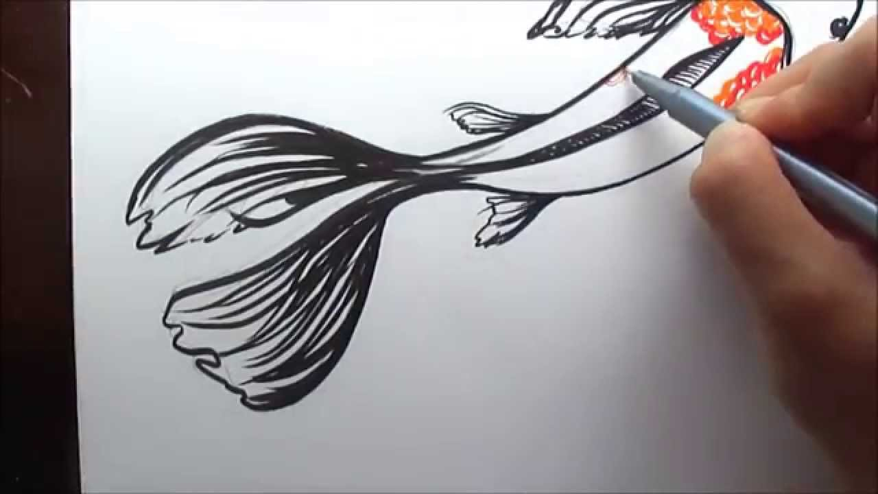 1280x720 How To Draw A Koi Fish (Simple And Easy Illustration)