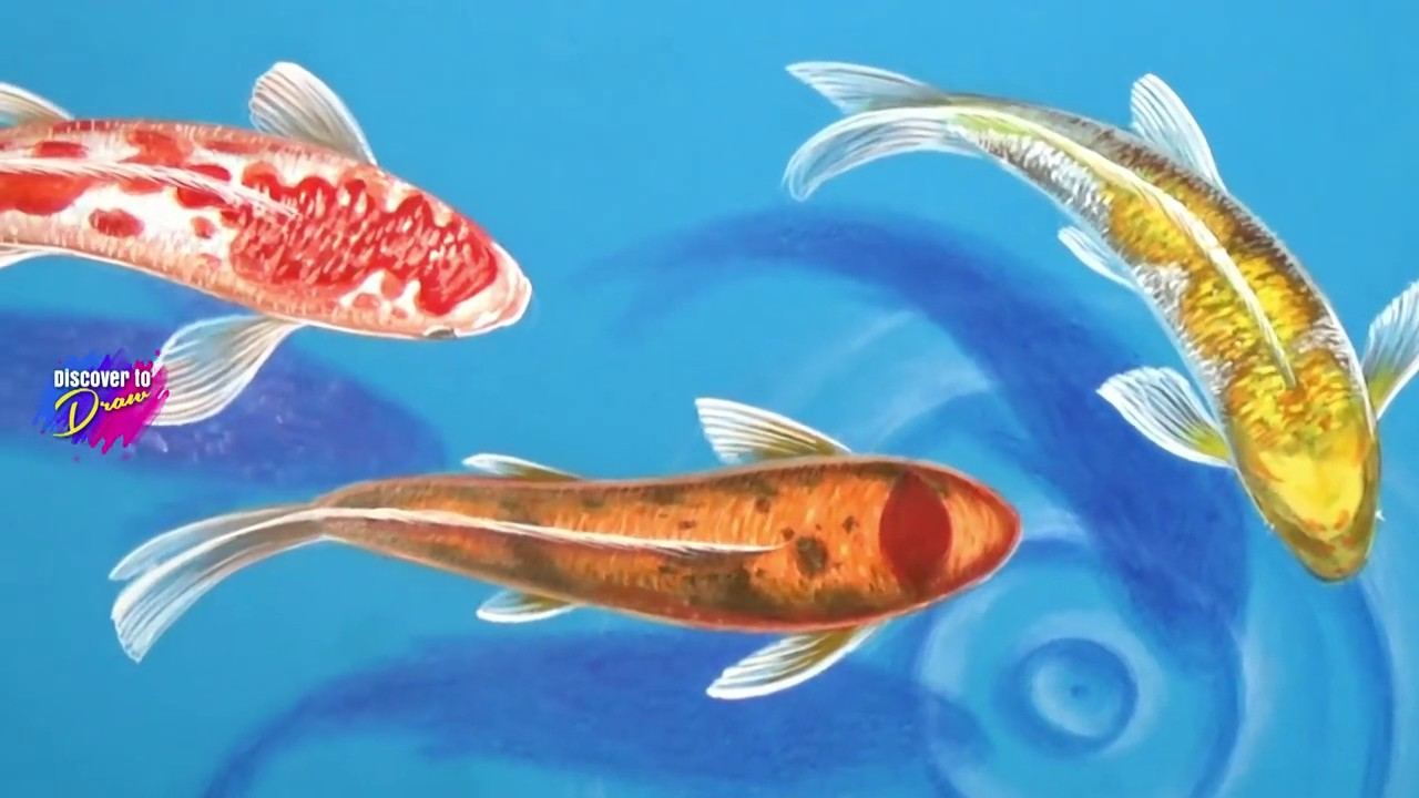 Koi Fish Drawing Tutorial at GetDrawings.com   Free for personal use ...