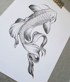 koi fish pencil drawing at free for personal use koi fish pencil drawing of. Black Bedroom Furniture Sets. Home Design Ideas