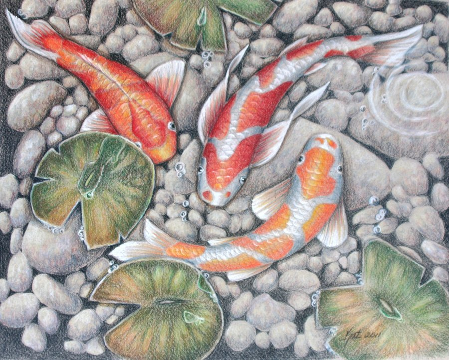 900x721 Koi Pond 2 By Katlewing