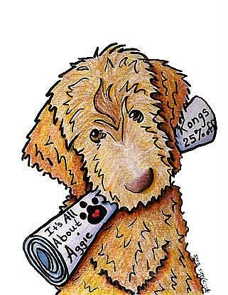 321x414 Art Aggie The Labradoodle By Artist Kiniart Drawing