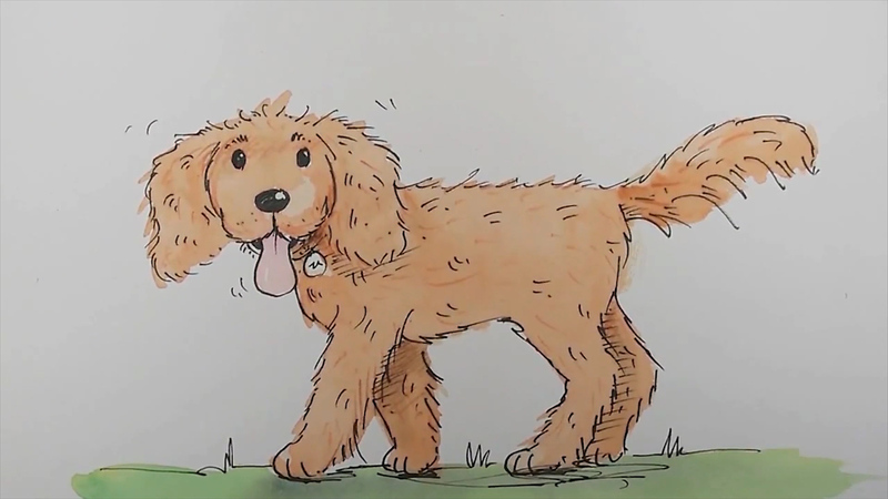 800x450 How To Draw A Cartoon Labradoodle