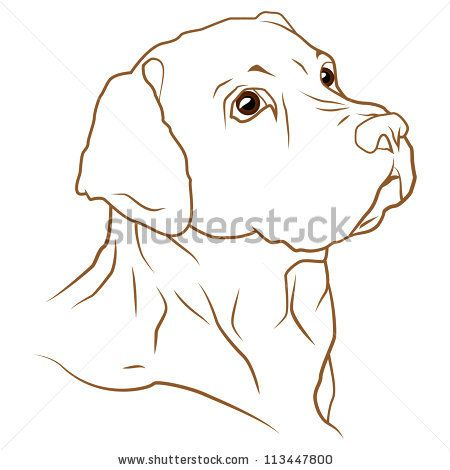 450x470 A Beautiful Vector Illustration Of A Labrador Retriever Dog