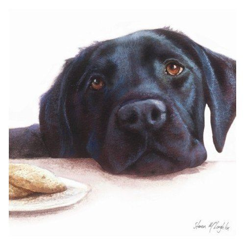 500x500 Labrador retrievers at christmas Watercolour Black Labrador