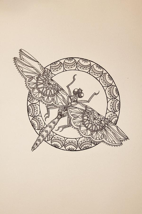 600x900 Lace Dragonfly Ii Drawing By Jodi Harvey Brown