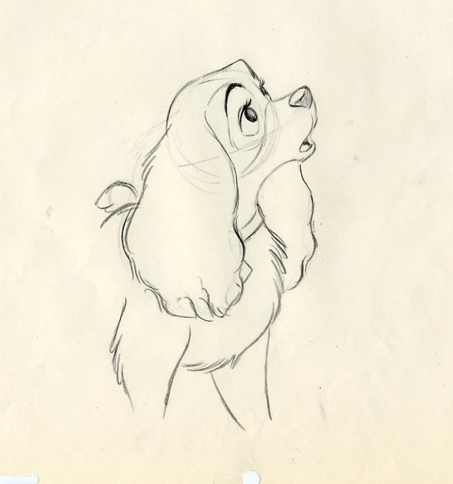 652x697 Disney Lady And The Tramp Animation Drawing Of Lady, 1955 Disney