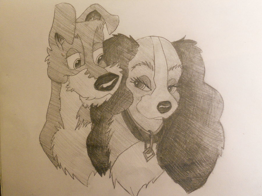 900x675 Sketch Lady And The Tramp By Sleevia
