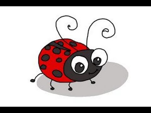480x360 How To Draw A Ladybug For Kids