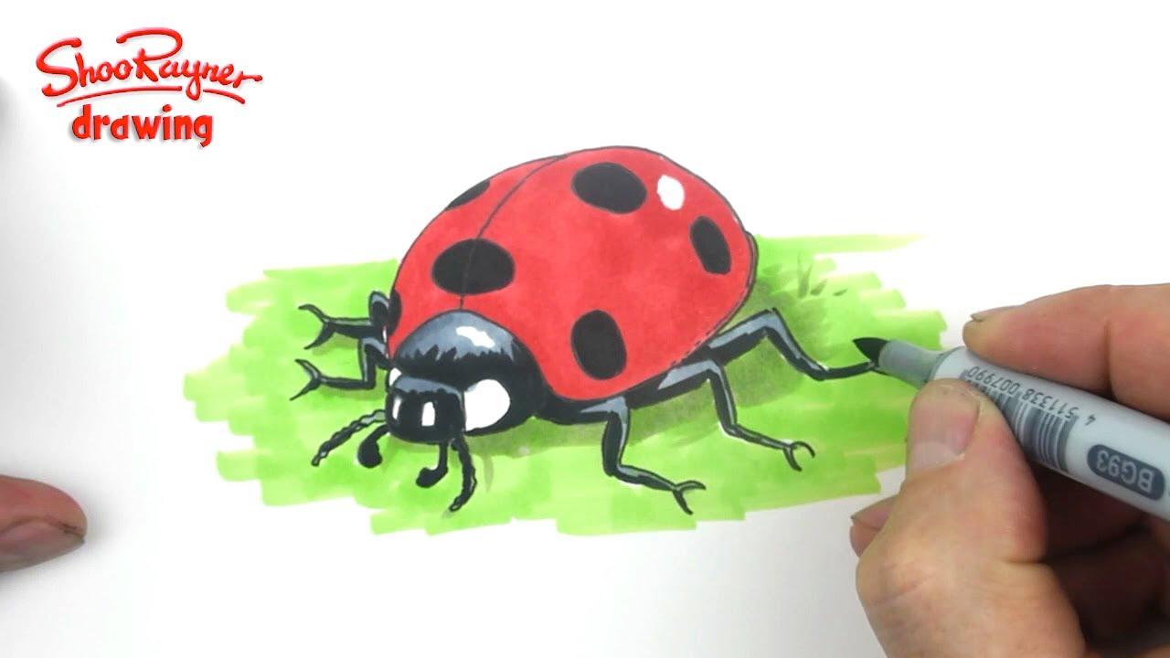 1280x720 How To Draw A Cute Ladybug