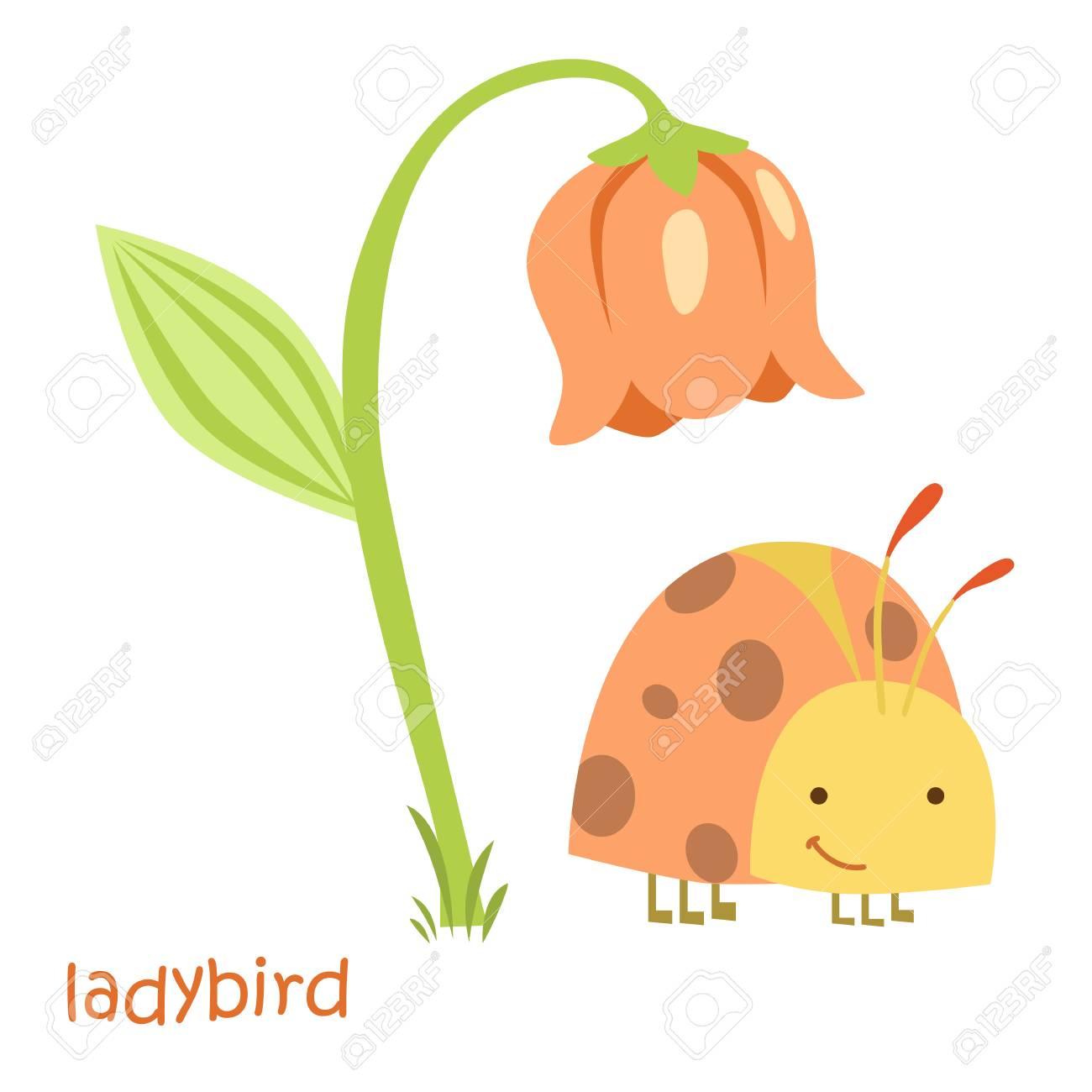1300x1300 Ladybug Isolated. Drawing Ladybug For A Child Royalty Free