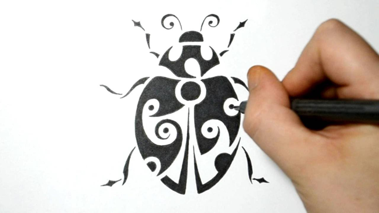 1280x720 Drawing A Lady Bug