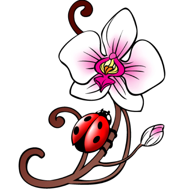 640x640 Lady Bug Tattoo Tattoo Lady Bug Tattoo, Bug Tattoo