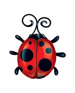 240x300 Ladybug Temporary Tattoo Tattoo Idea Tattoo
