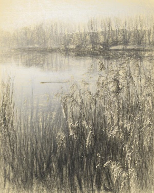 600x753 Pencil Drawing Imge Landscape Of Lake In Mist With Sun Glow