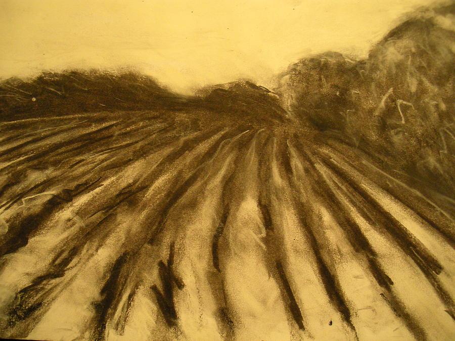 900x675 Farm Land Study Drawing By Jaylynn Johnson