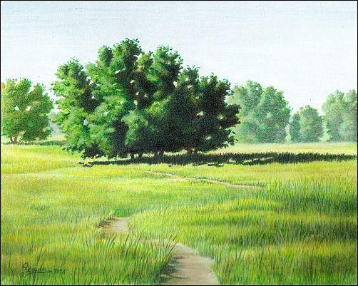 502x401 New Painting The Sentinel, Colored Pencil Landscape Landscape