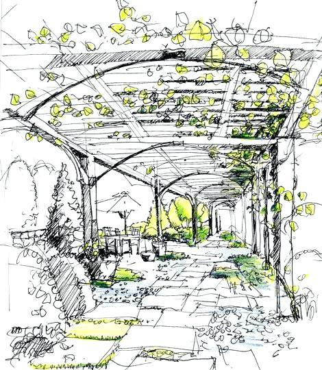 470x540 Landscape Design Sketches