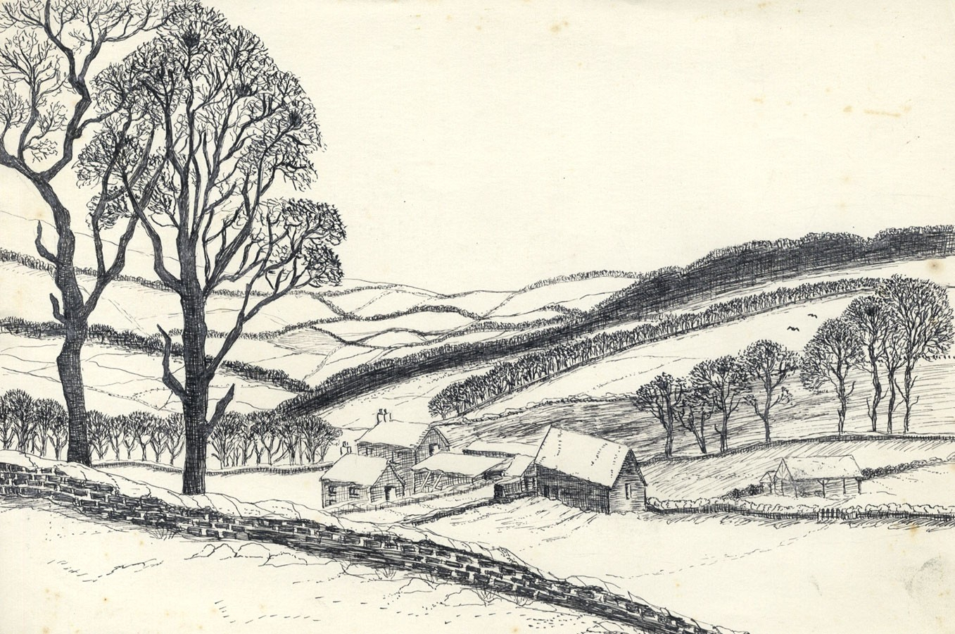 1357x900 Pen Landscape Drawing Elizabeth Painter