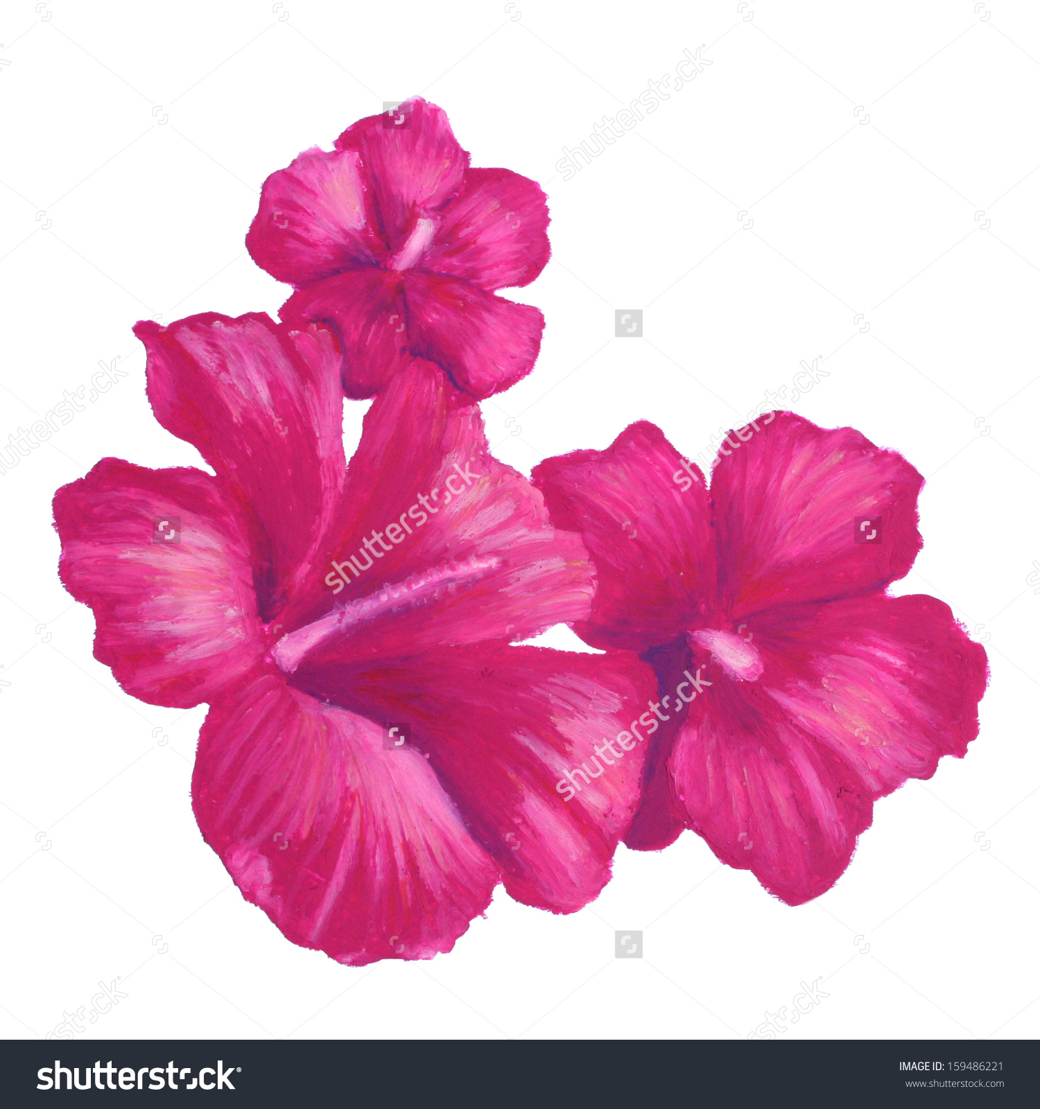 Large flower drawing at getdrawings free for personal use 1500x1600 beautiful pastel design with hand drawn flamingo made in pink izmirmasajfo