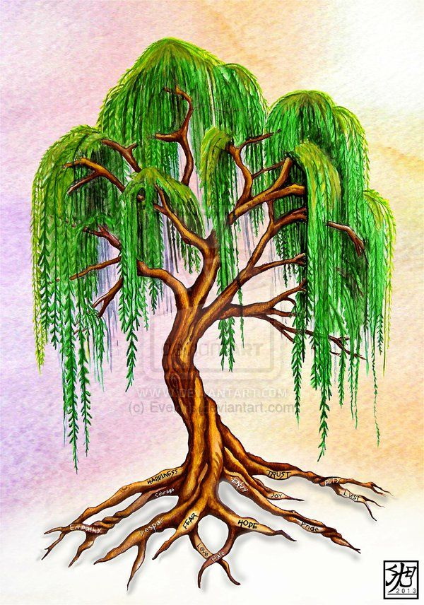 600x856 Willow Tree Tattoo Weeping Willow With Virtue Roots By ~everiris