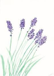 188x265 Lavender Flowers Frame Wedding Lavender, Searches