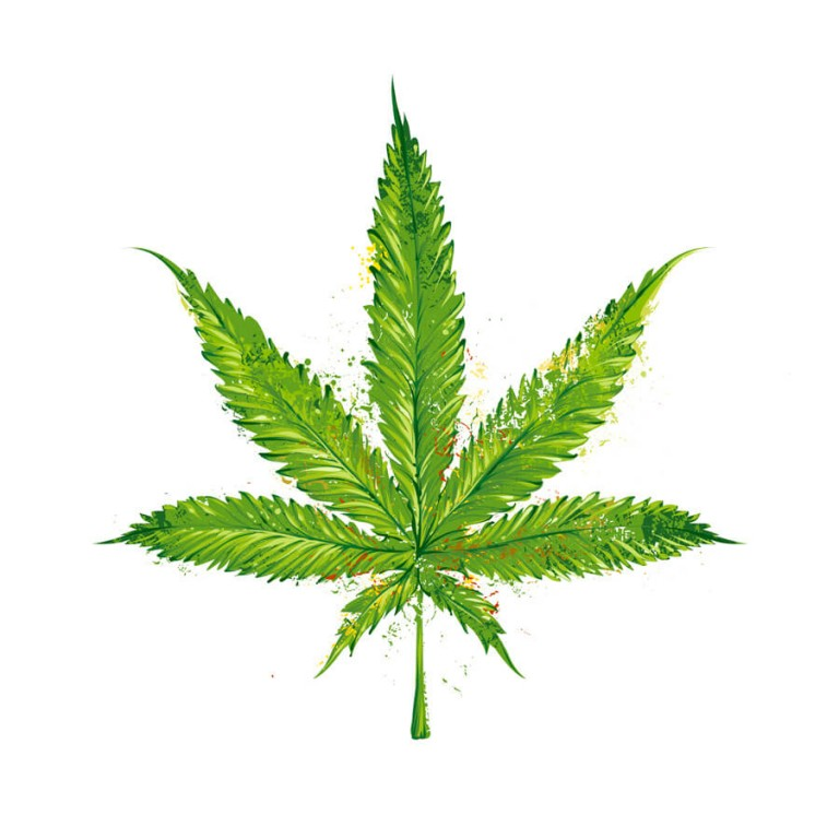 768x768 How To Easily Draw A Pot Leaf Step By Step Get High