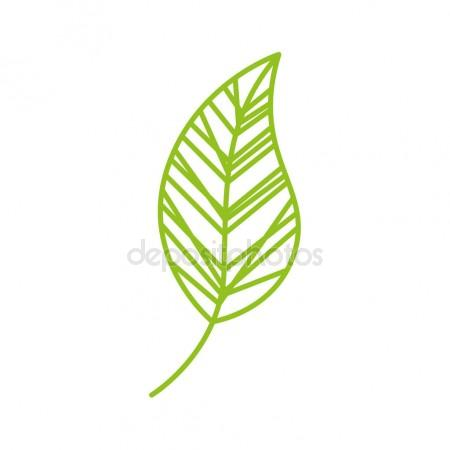 450x450 Leaf Stock Vectors, Royalty Free Leaf Illustrations