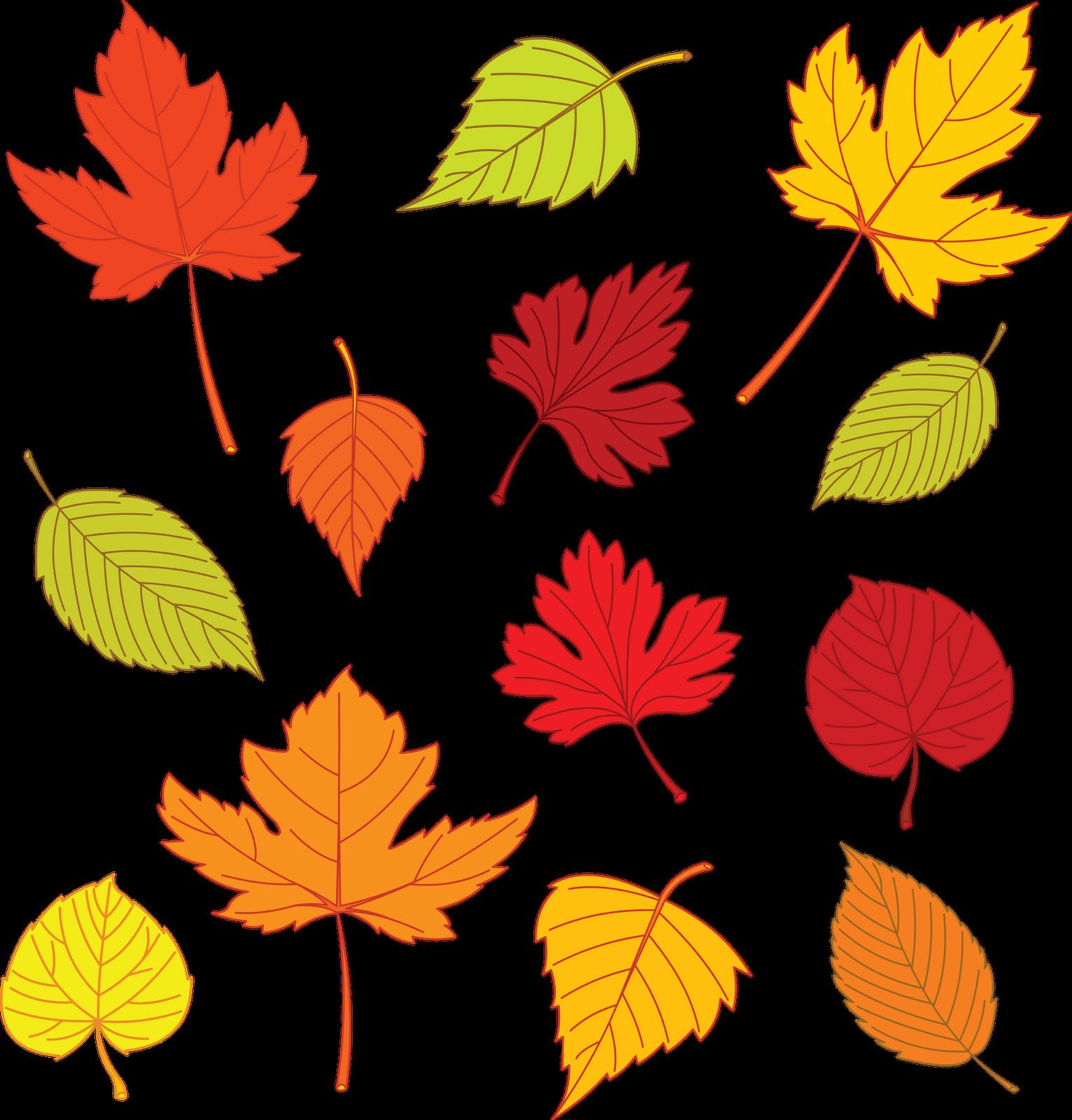 Free Printable Leaf Templates Art Kids Crafts
