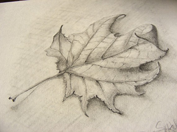 570x427 Fallen Leaf Pencil Sketch With Burlap Clip Frame Art