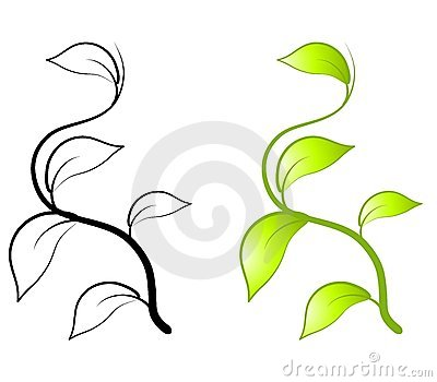 400x350 Leaf Vine Clipart Pumpkin Vine Drawing Pumpkin Vine Clipart