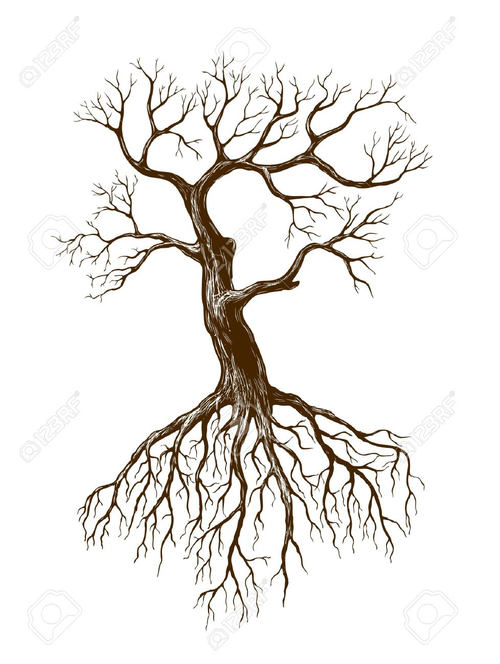 978x1300 Illustration Of Big Leafless Tree Royalty Free Cliparts, Vectors