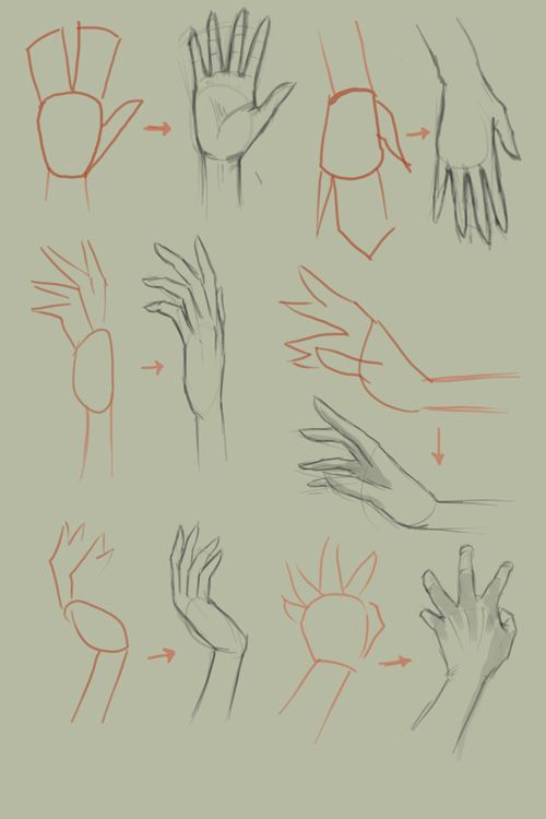 500x750 How To Draw Hands. An Art Tutorial Basic Drawing, Drawings