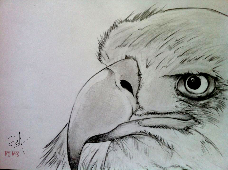 960x717 Learning Drawing By Loy21