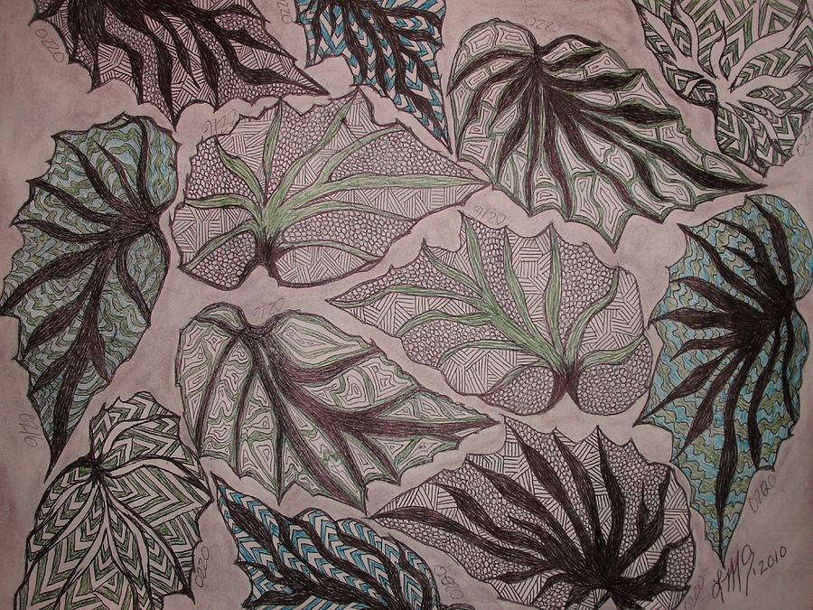 900x675 Angel Wing Begonia Leaves Drawing By Linmarie Surface