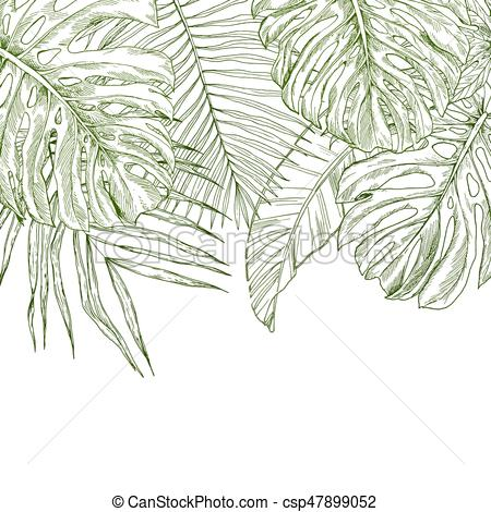 450x470 Top Border Composed Of Tropical Leaves, Sketch Illustration